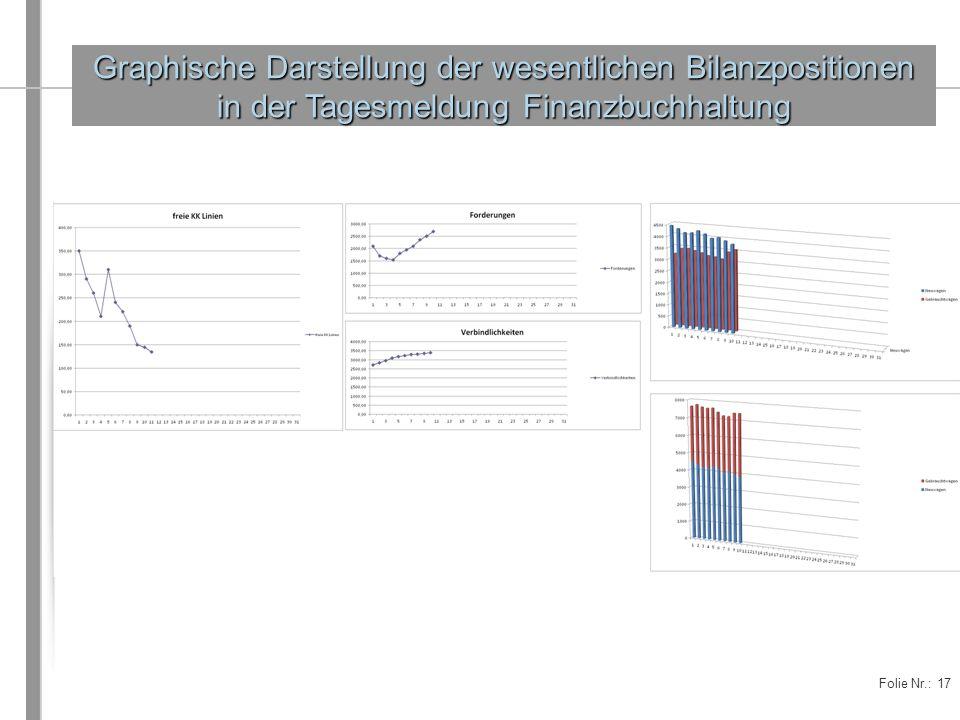 Folie Nr.: 17 Graphische Darstellung der wesentlichen Bilanzpositionen in der Tagesmeldung Finanzbuchhaltung
