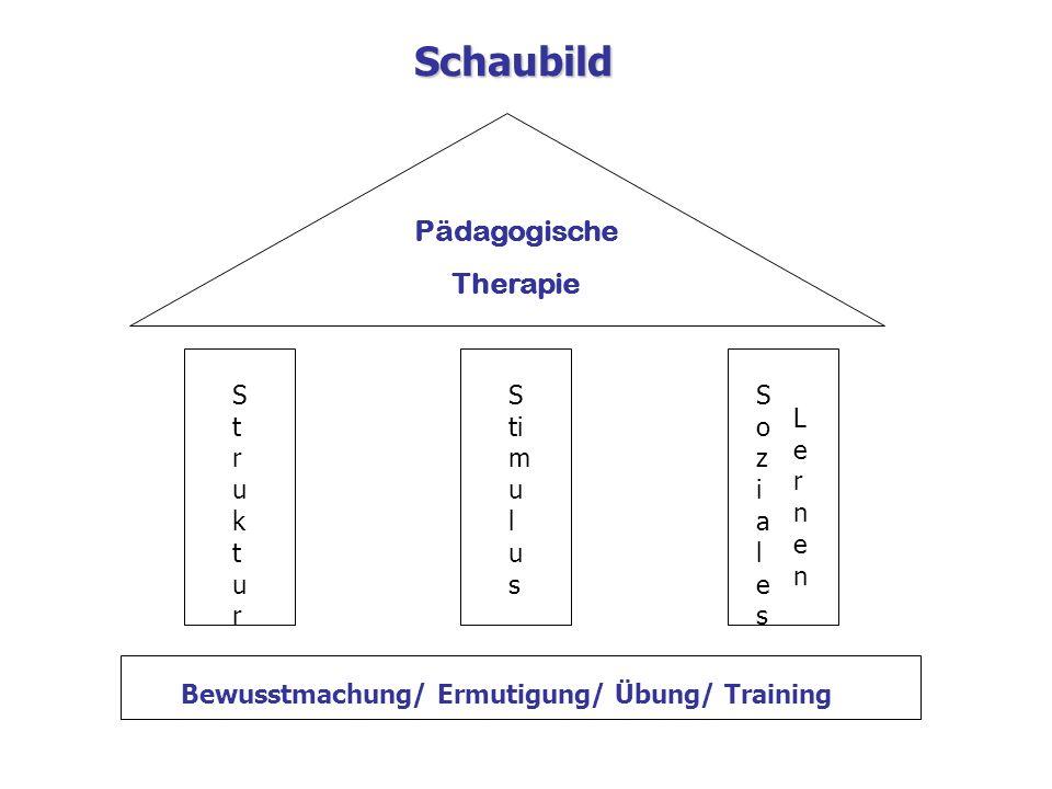 Pädagogische Therapie StrukturStruktur S ti m u l u s SozialesSoziales LernenLernen Bewusstmachung/ Ermutigung/ Übung/ Training Schaubild