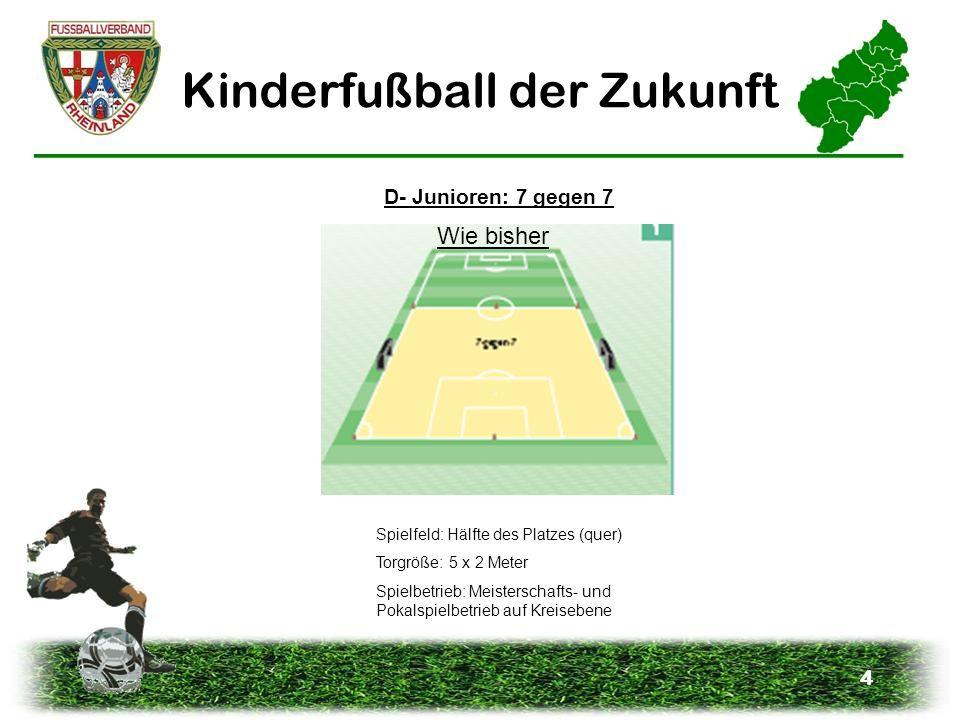 4 Kinderfußball der Zukunft D- Junioren: 7 gegen 7 Spielfeld: Hälfte des Platzes (quer) Torgröße: 5 x 2 Meter Spielbetrieb: Meisterschafts- und Pokals