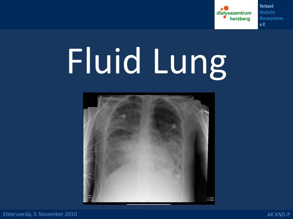 Elsterwerda, 3. November 2010 AK KND-P Fluid Lung
