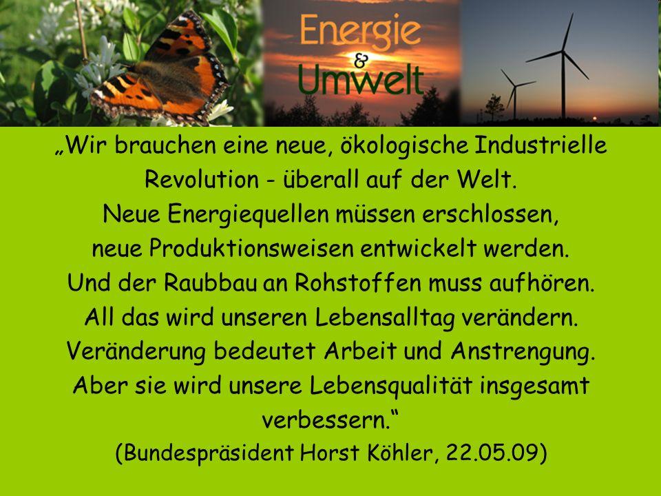 Wir brauchen eine neue, ökologische Industrielle Revolution - überall auf der Welt. Neue Energiequellen müssen erschlossen, neue Produktionsweisen ent