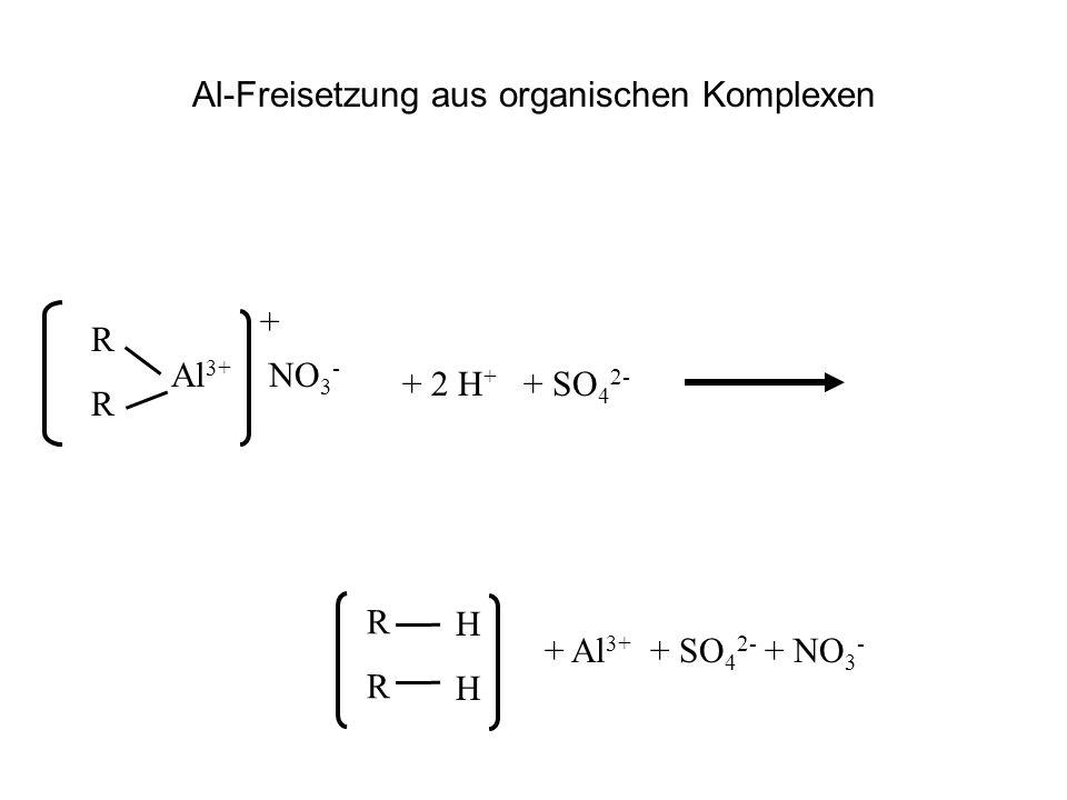 Al-Freisetzung aus organischen Komplexen RRRR Al 3+ + 2 H + + SO 4 2- RRRR + Al 3+ + SO 4 2- + NO 3 - + NO 3 - HHHH