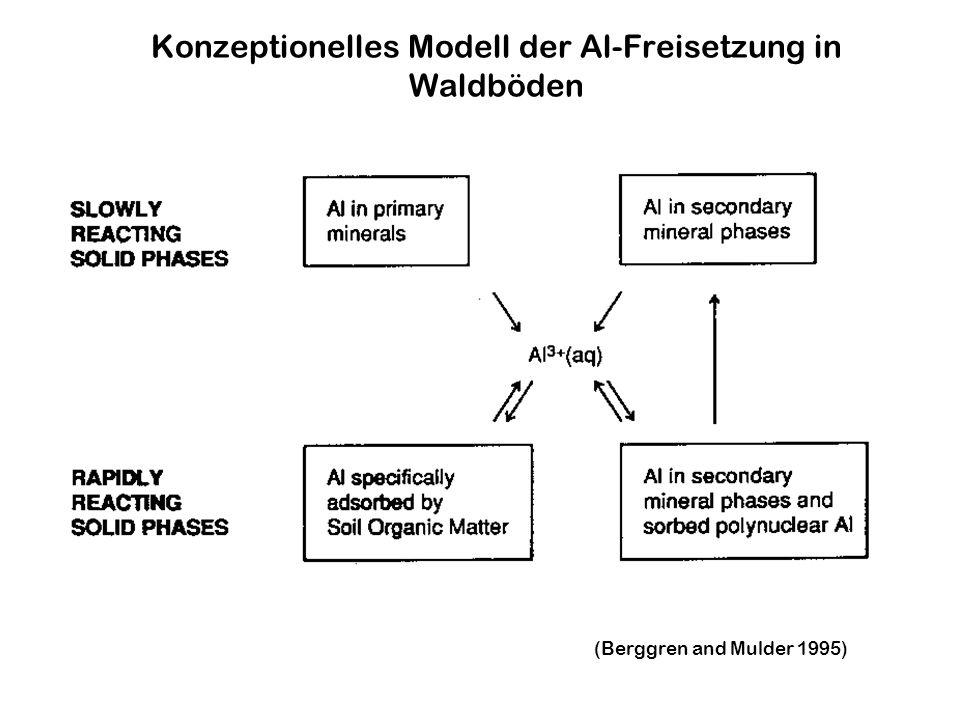 (Berggren and Mulder 1995) Konzeptionelles Modell der Al-Freisetzung in Waldböden