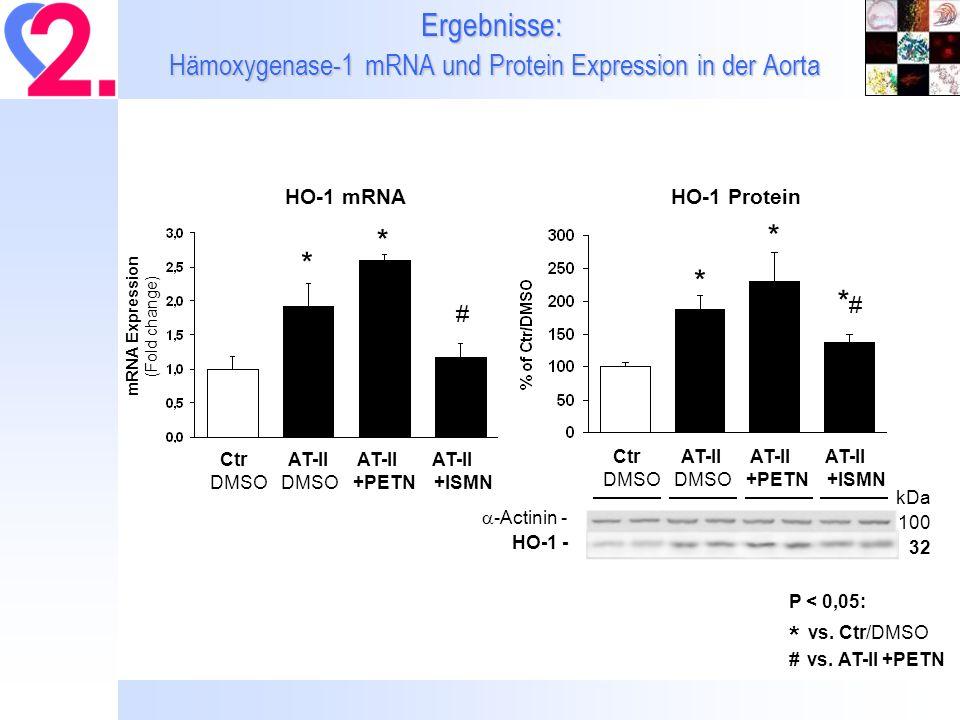 Ergebnisse: Hämoxygenase-1 mRNA und Protein Expression in der Aorta P < 0,05: * vs. Ctr/DMSO # vs. AT-II +PETN Ctr AT-II AT-II AT-II DMSO DMSO +PETN +