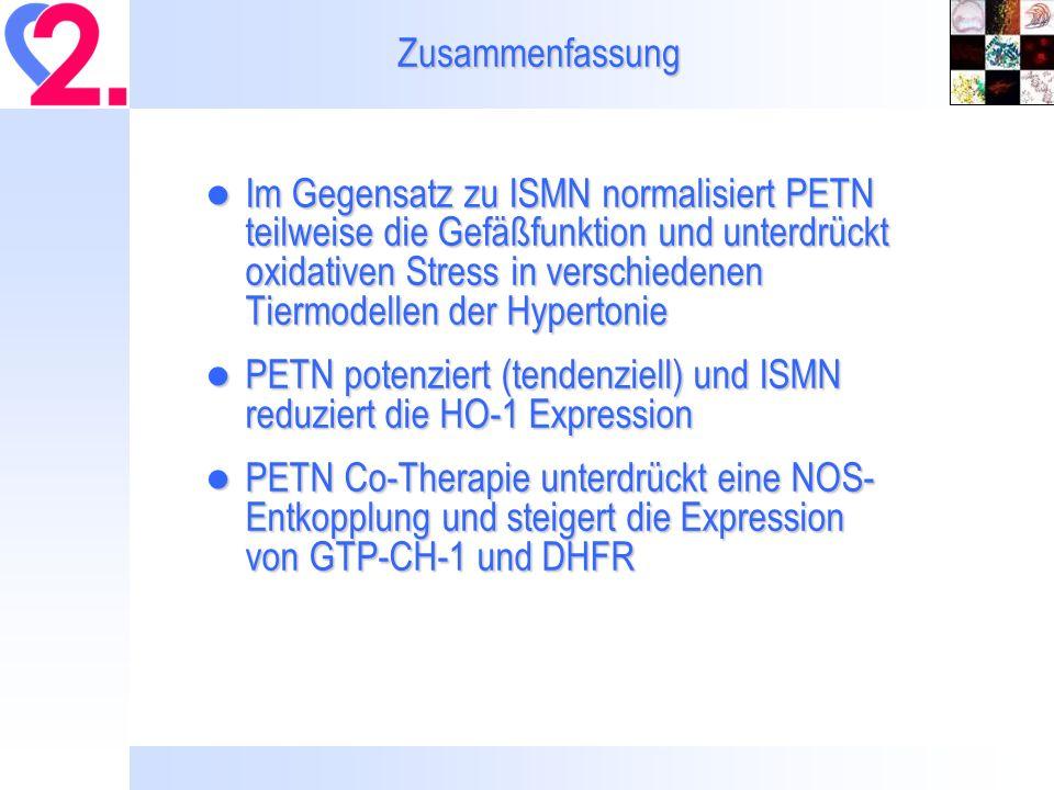 Zusammenfassung Im Gegensatz zu ISMN normalisiert PETN teilweise die Gefäßfunktion und unterdrückt oxidativen Stress in verschiedenen Tiermodellen der