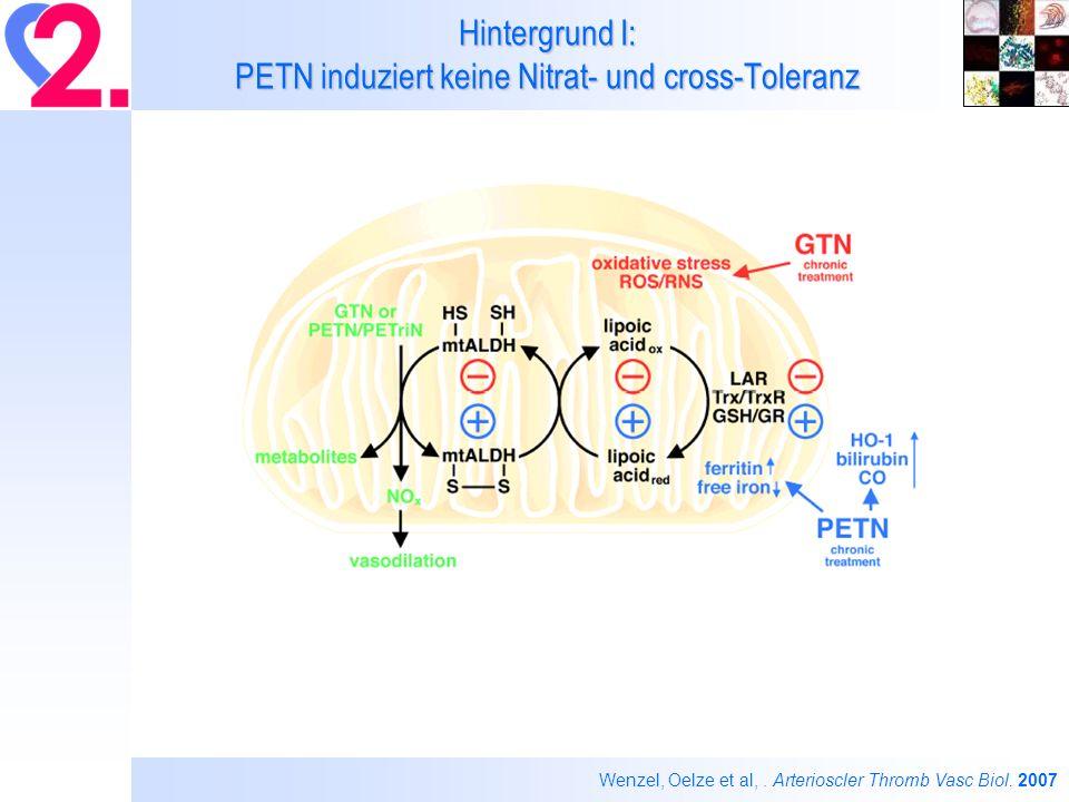Hintergrund I: PETN induziert keine Nitrat- und cross-Toleranz Wenzel, Oelze et al,. Arterioscler Thromb Vasc Biol. 2007