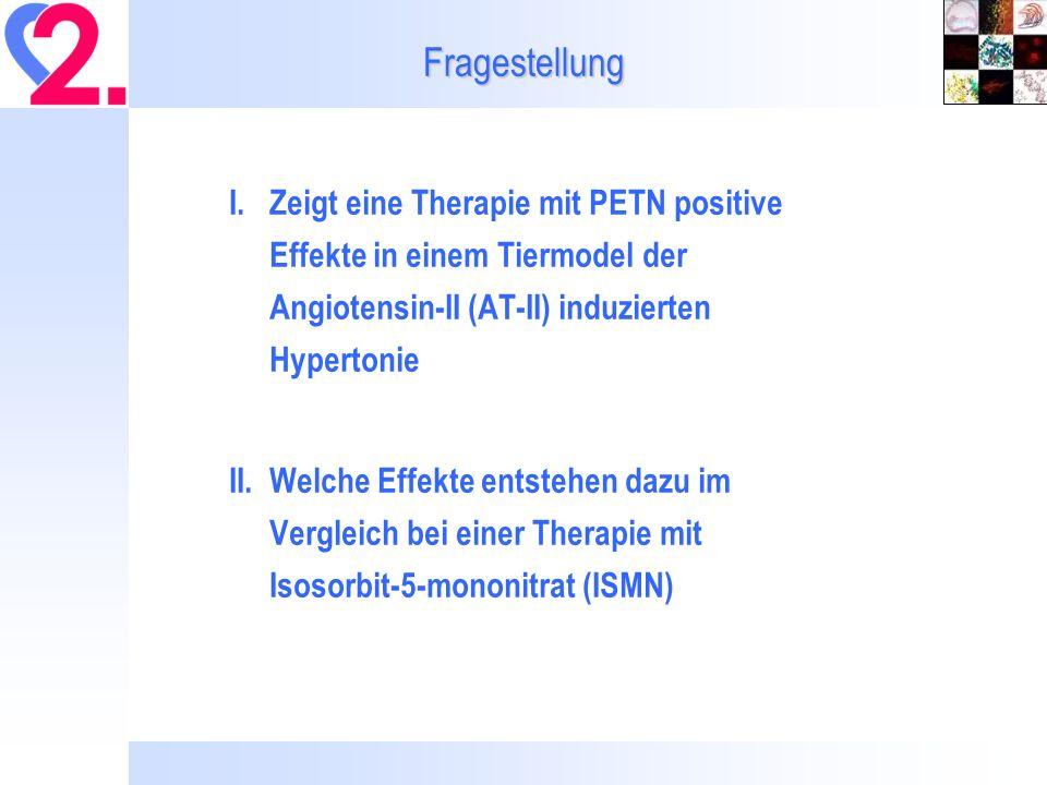 Tiermodel Männliche Wistar Ratten (230-250 g) Behandlung mit AT-II (1 mg/kg/d) allein oder zusammen mit PETN (15 mg/kg/d) oder ISMN (75 mg/kg/d) über subcutane osmotische Minipumpen für 7 Tage Kontroll-Pumpen mit dem entsprechenden Lösungsmittel (DMSO für Nitrate bzw.