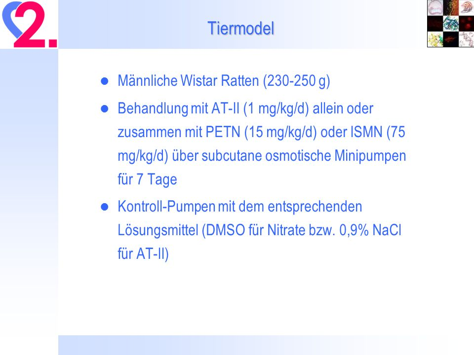 Ergebnisse: PETN vs.