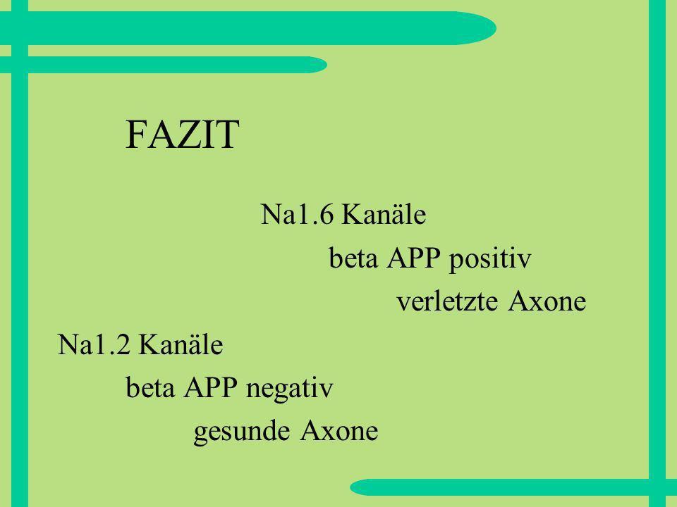 FAZIT Na1.6 Kanäle beta APP positiv verletzte Axone Na1.2 Kanäle beta APP negativ gesunde Axone
