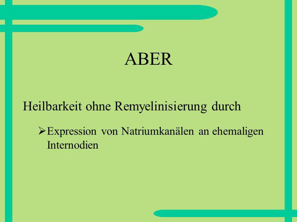ABER Expression von Natriumkanälen an ehemaligen Internodien Heilbarkeit ohne Remyelinisierung durch