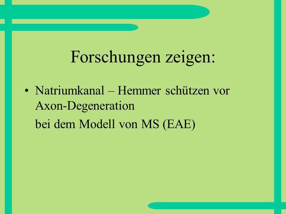 Forschungen zeigen: Natriumkanal – Hemmer schützen vor Axon-Degeneration bei dem Modell von MS (EAE)