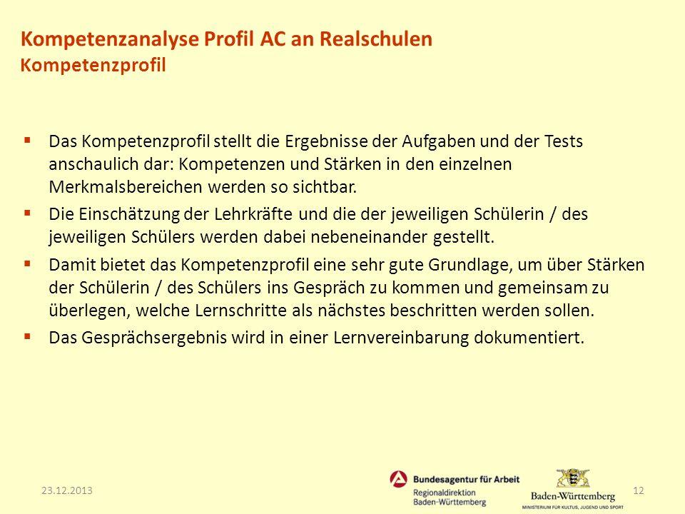 23.12.201312 Das Kompetenzprofil stellt die Ergebnisse der Aufgaben und der Tests anschaulich dar: Kompetenzen und Stärken in den einzelnen Merkmalsbe
