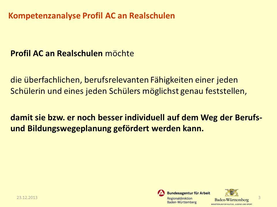 23.12.201314 Das Verfahren aus Beobachtungsaufgaben und Tests wird durch einen Fragebogen zu den Berufs- und Studieninteressen der jeweiligen Schülerin / des jeweiligen Schülers ergänzt.