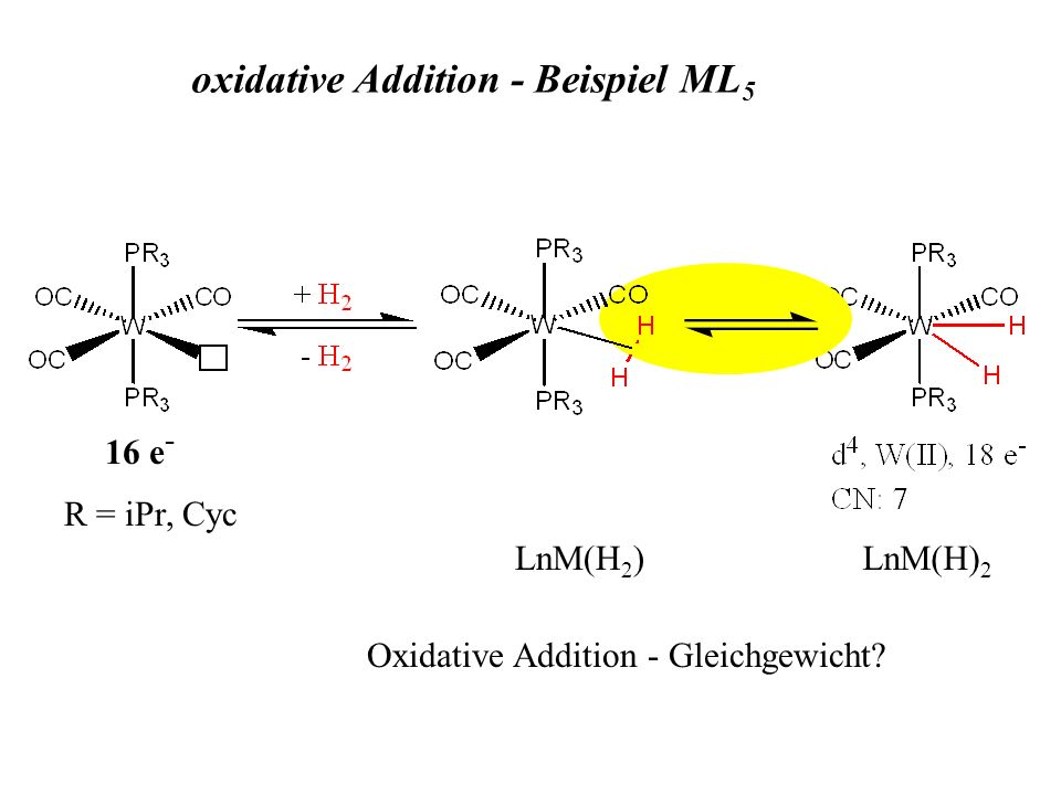 R = iPr, Cyc 16 e - LnM(H 2 )LnM(H) 2 oxidative Addition - Beispiel ML 5 Oxidative Addition - Gleichgewicht?