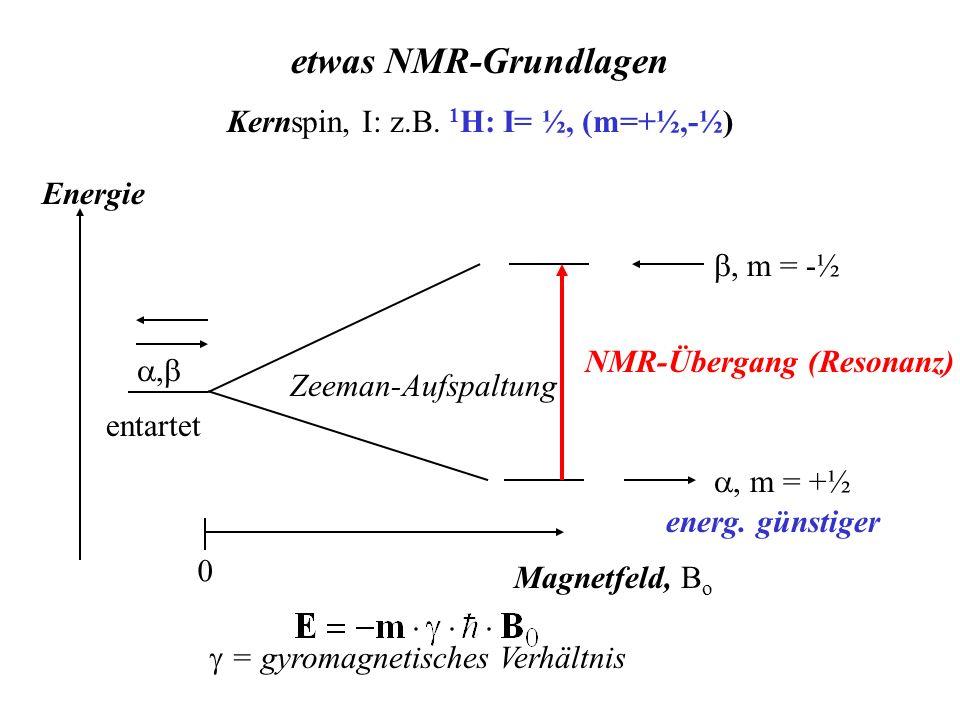 Kernspin, I: z.B. 1 H: I= ½, (m=+½,-½) etwas NMR-Grundlagen entartet Energie Magnetfeld, B o 0 Zeeman-Aufspaltung m = +½ m = -½ = gyromagnetisches Ver