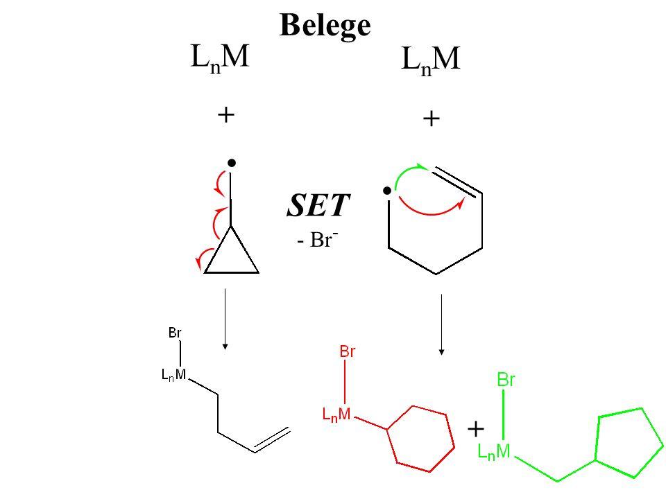LnMLnM LnMLnM + + SET - Br - + Belege