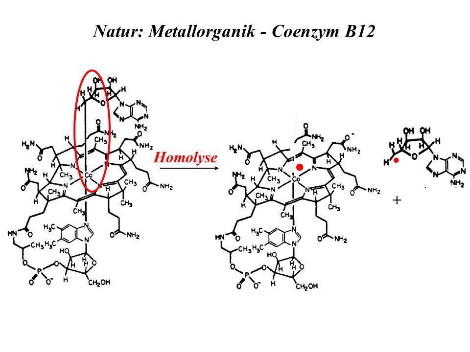 Natur: Metallorganik - Coenzym B12 + Homolyse