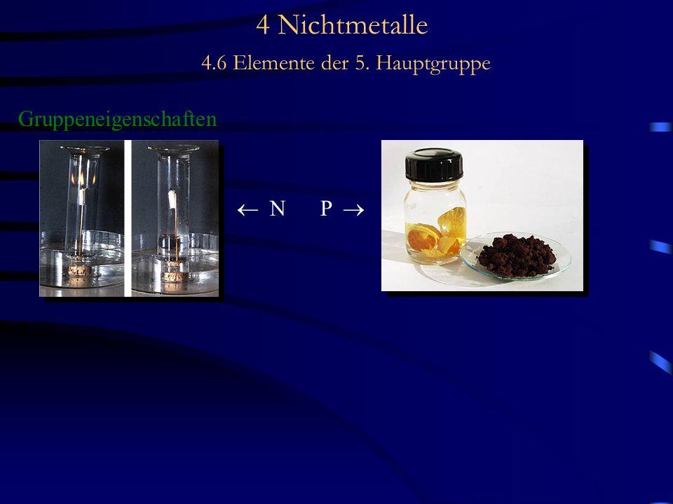 4 Nichtmetalle 4.6 Elemente der 5. Hauptgruppe Gruppeneigenschaften N P