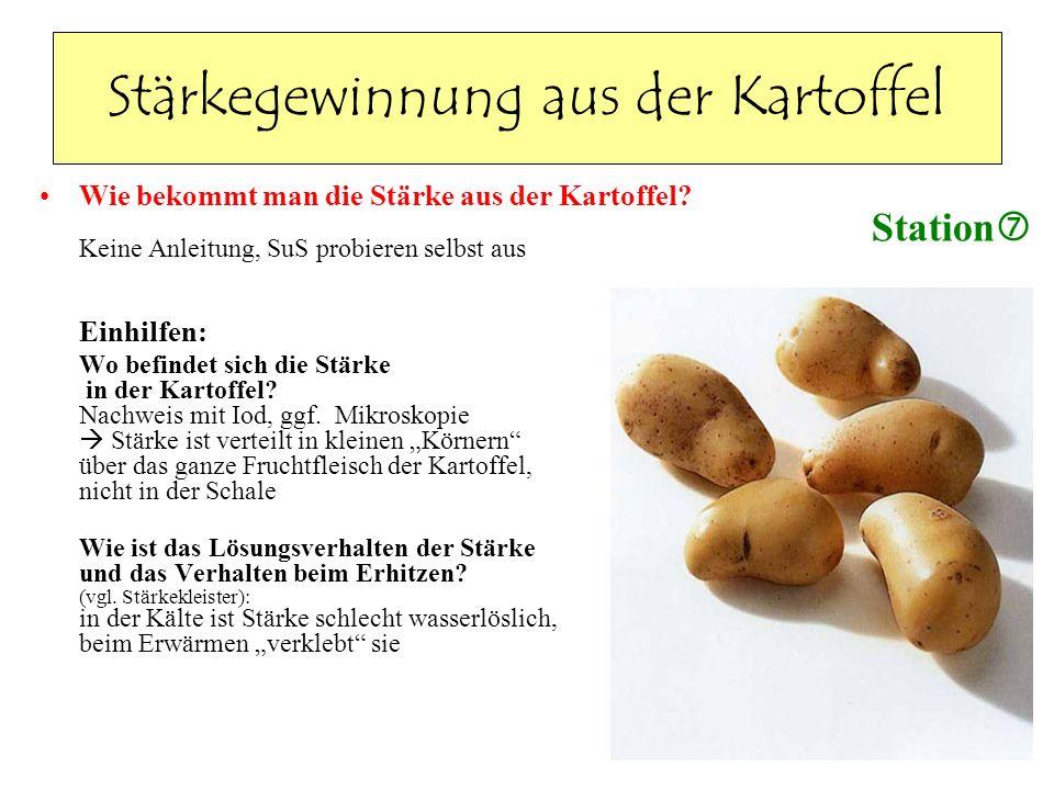 Stärkegewinnung aus der Kartoffel Wie bekommt man die Stärke aus der Kartoffel? Keine Anleitung, SuS probieren selbst aus Einhilfen: Wo befindet sich