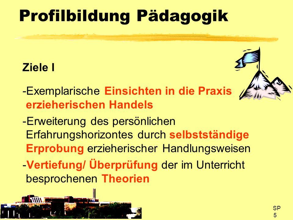 SP 16 Profilbildung Pädagogik Inhalte I Das Rahmenthema eines Projekts/Profils wird so gewählt, dass es einen deutlichen Bezug zum Focus des Kurshalbjahres besitzt und somit langfristig methodisch und sachlich vorbereitet werden kann.