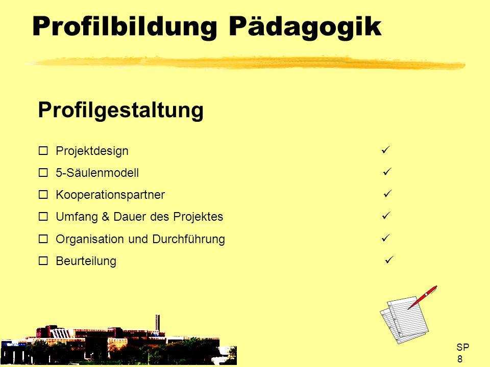 SP 8 Profilbildung Pädagogik Profilgestaltung Projektdesign 5-Säulenmodell Kooperationspartner Umfang & Dauer des Projektes Organisation und Durchführ