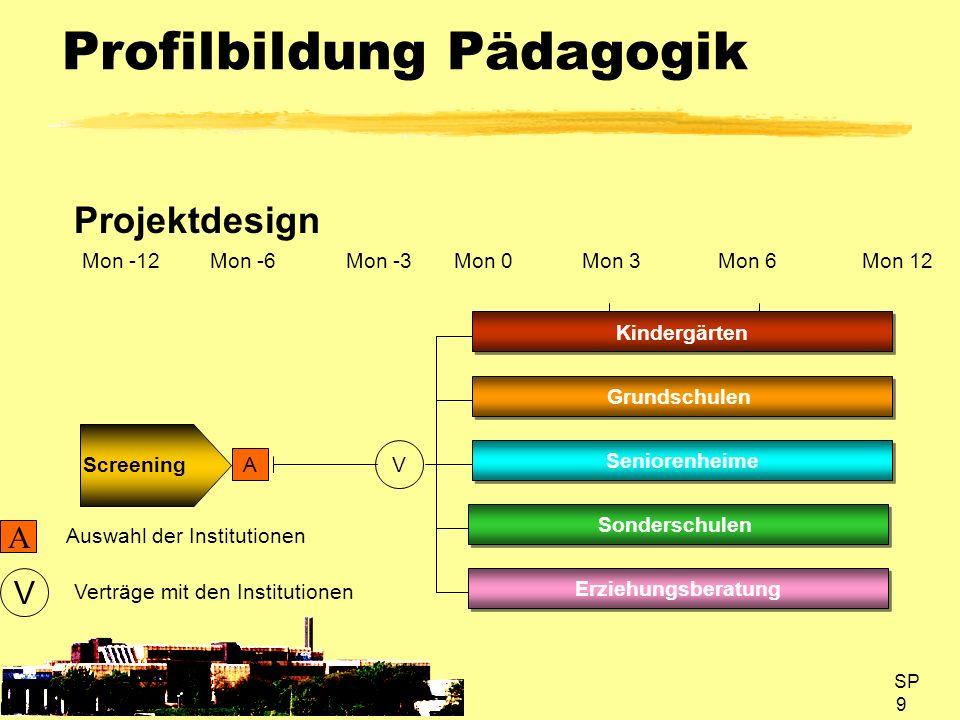 SP 9 Profilbildung Pädagogik Projektdesign A V Kindergärten A Mon 3Mon 6 Screening Grundschulen Seniorenheime V Mon 0 Auswahl der Institutionen Mon 12