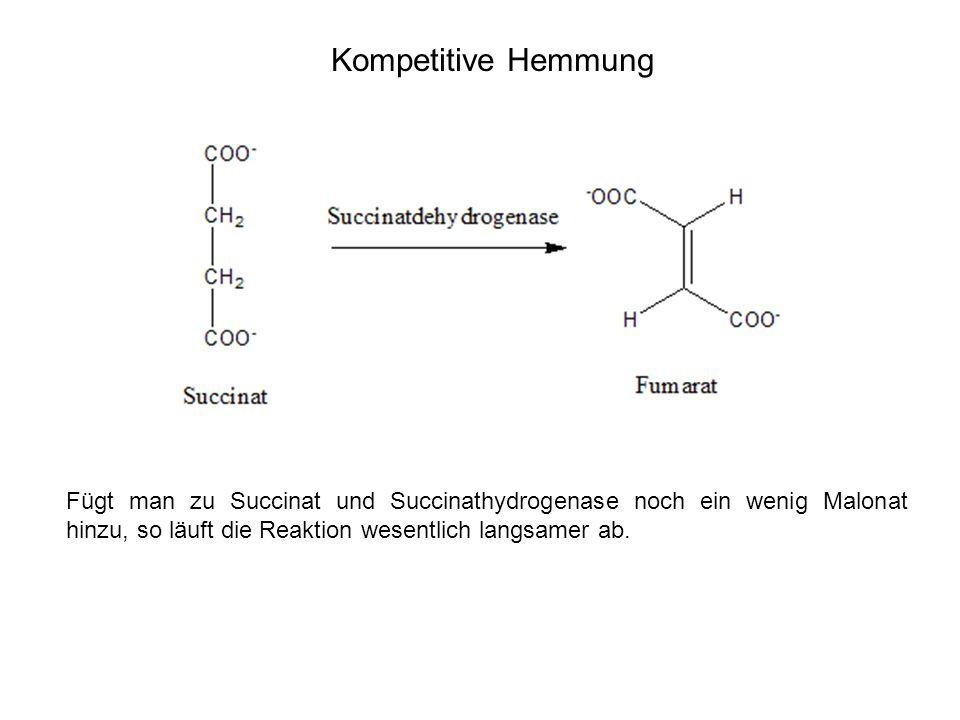 Kompetitive Hemmung Fügt man zu Succinat und Succinathydrogenase noch ein wenig Malonat hinzu, so läuft die Reaktion wesentlich langsamer ab.