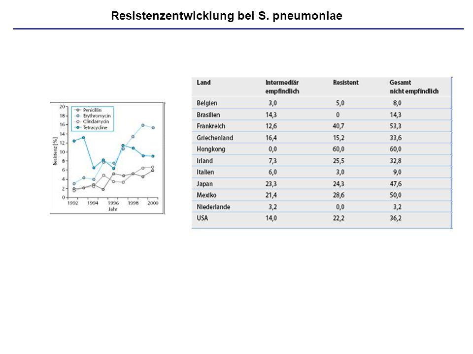 Isoniazid-resistenz; 4-Drug-Behandlung