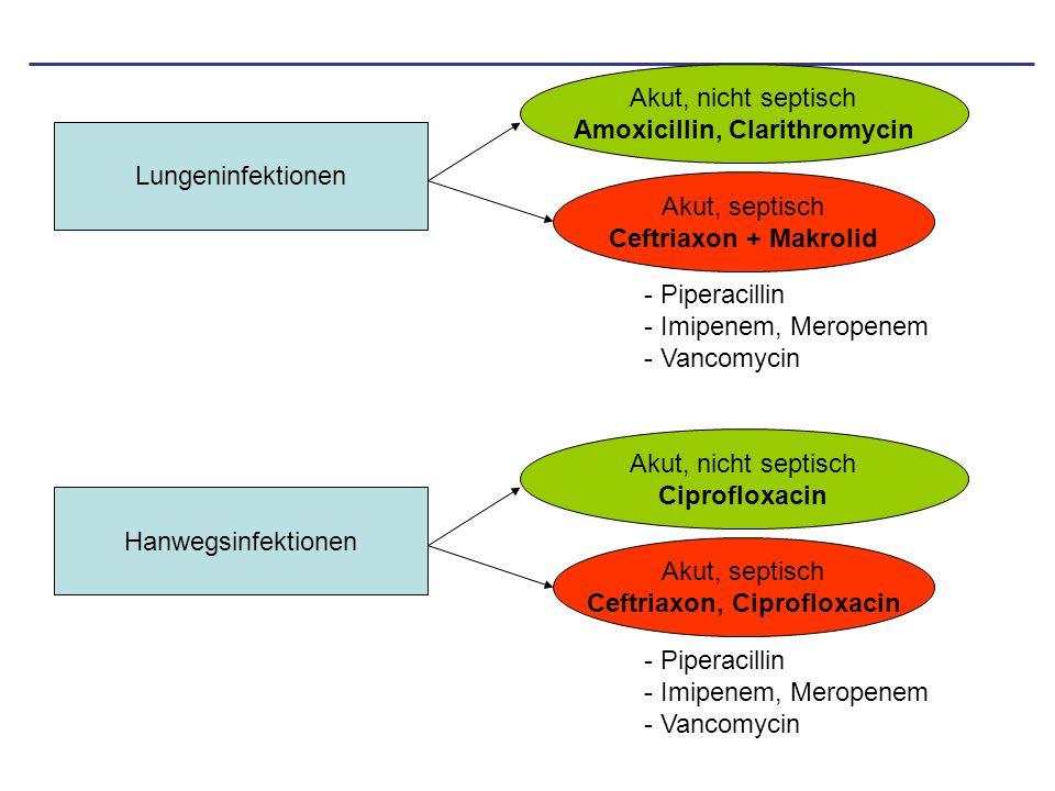 Wichtige Medikamente bei Problemfälle Typische Breitspektrum AB: –Carbapeneme (breitestes Spektrum aller Beta-Laktam AB) –Cefepim/Ceftazidim (Pseudomonas) (3/4 generation Cephalosporine) –Piperacillin + Tazobactam –Ciprofloxacin (Pseudomonas) –Ceftriaxon Kombinationspartner: –Aminoglykoside (Synergismus bei Beta-Laktam) –Oxacillin (sensible Staphylokokken) –Ampicillin (Enterokokken) Reserve: –Vancomycin (Glykoproteingruppe) (MRSA) –Streptogramine (MRSA, VRE) –Linezolid (MRSA, VRE) –Rifampicin (MRSA, VRE, nach Antibiogramm)