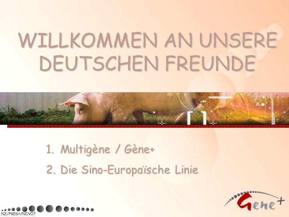 N2/PREG+/NOV07 WILLKOMMEN AN UNSERE DEUTSCHEN FREUNDE 1. Multigène / Gène+ 2. Die Sino-Europaïsche Linie