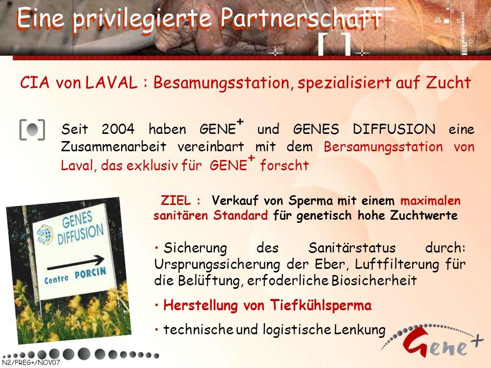 N2/PREG+/NOV07 Seit 2004 haben GENE + und GENES DIFFUSION eine Zusammenarbeit vereinbart mit dem Bersamungsstation von Laval, das exklusiv für GENE +