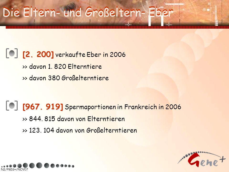 N2/PREG+/NOV07 Die Eltern- und Großeltern- Eber [2. 200] [2. 200] verkaufte Eber in 2006 >> davon 1. 820 Elterntiere >> davon 380 Großelterntiere [967