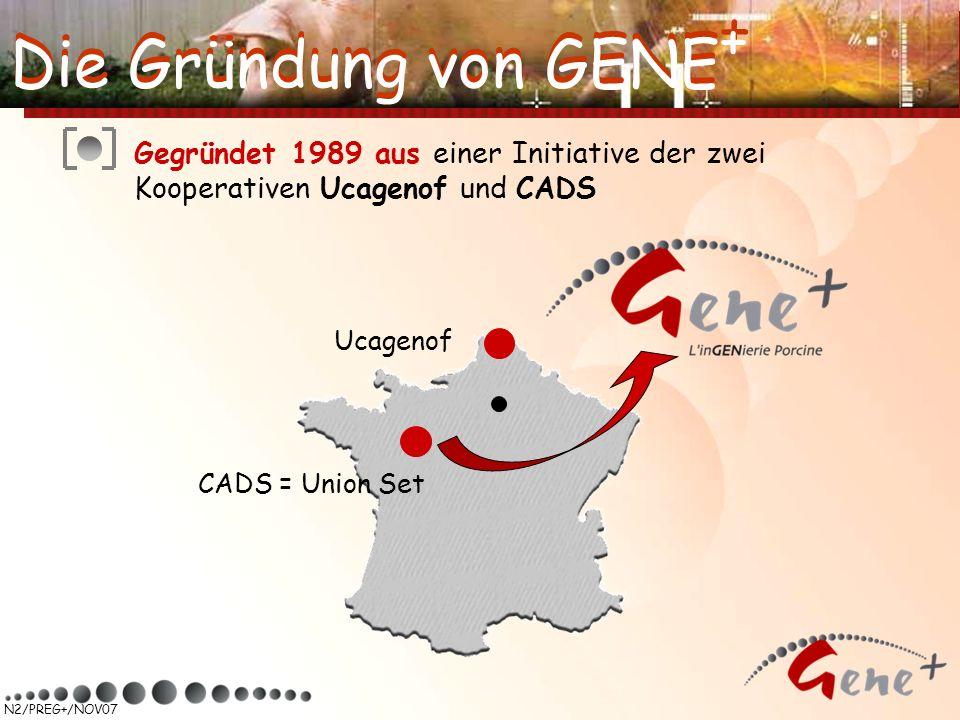 N2/PREG+/NOV07 Gegründet 1989 aus einer Initiative der zwei Kooperativen Ucagenof und CADS Ucagenof CADS = Union Set Die Gründung von GENE +
