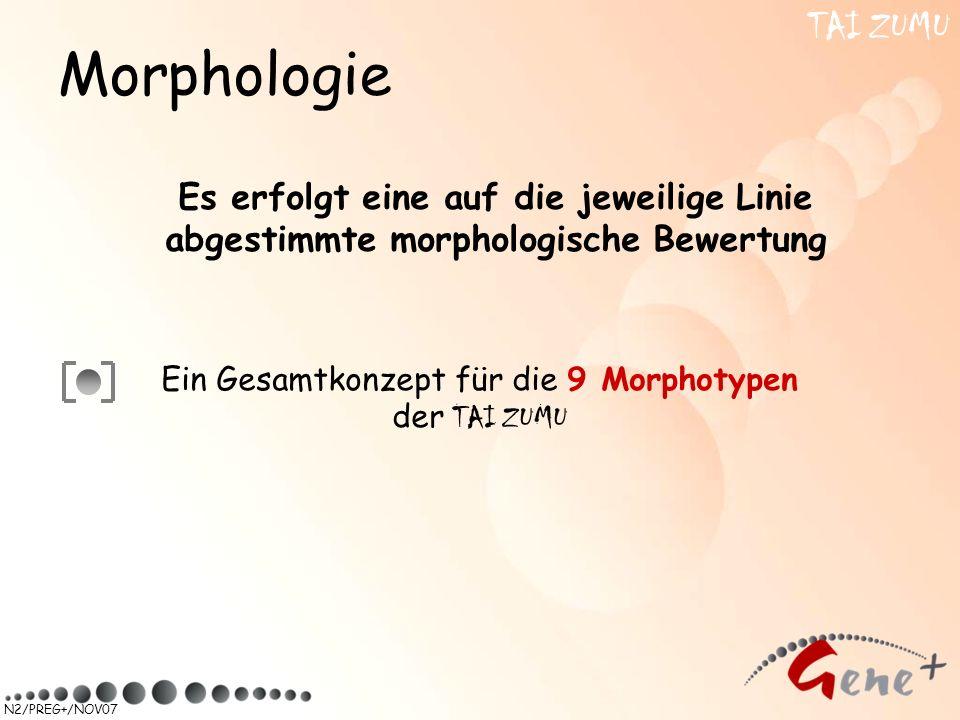 N2/PREG+/NOV07 Es erfolgt eine auf die jeweilige Linie abgestimmte morphologische Bewertung Ein Gesamtkonzept für die 9 Morphotypen der TAI ZUMU Morph