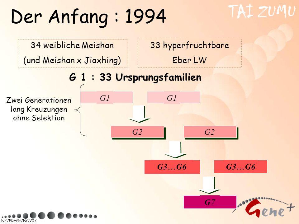N2/PREG+/NOV07 34 weibliche Meishan (und Meishan x Jiaxhing) 33 hyperfruchtbare Eber LW G 1 : 33 Ursprungsfamilien TAI ZUMU Der Anfang : 1994 G1 G2 G3