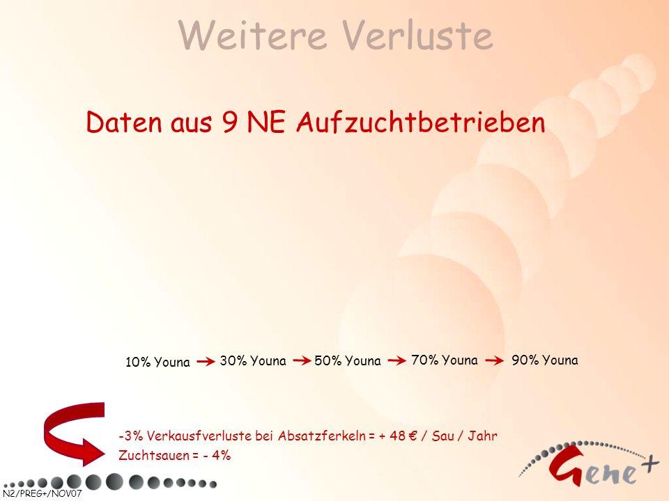 N2/PREG+/NOV07 Weitere Verluste Daten aus 9 NE Aufzuchtbetrieben -3% Verkausfverluste bei Absatzferkeln = + 48 / Sau / Jahr Zuchtsauen = - 4% 90% Youn
