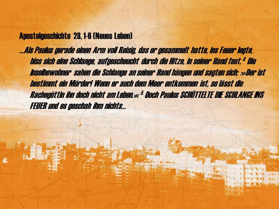 Apostelgeschichte 28, 1-6 (Neues Leben)...Als Paulus gerade einen Arm voll Reisig, das er gesammelt hatte, ins Feuer legte, biss sich eine Schlange, a