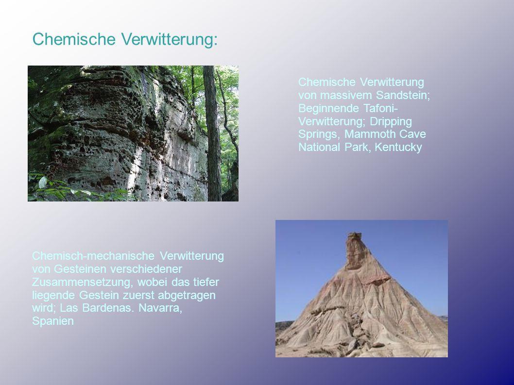 Chemische Verwitterung: Chemische Verwitterung von massivem Sandstein; Beginnende Tafoni- Verwitterung; Dripping Springs, Mammoth Cave National Park,