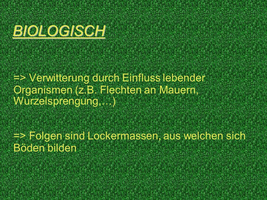 BIOLOGISCH => Verwitterung durch Einfluss lebender Organismen (z.B. Flechten an Mauern, Wurzelsprengung,…) => Folgen sind Lockermassen, aus welchen si