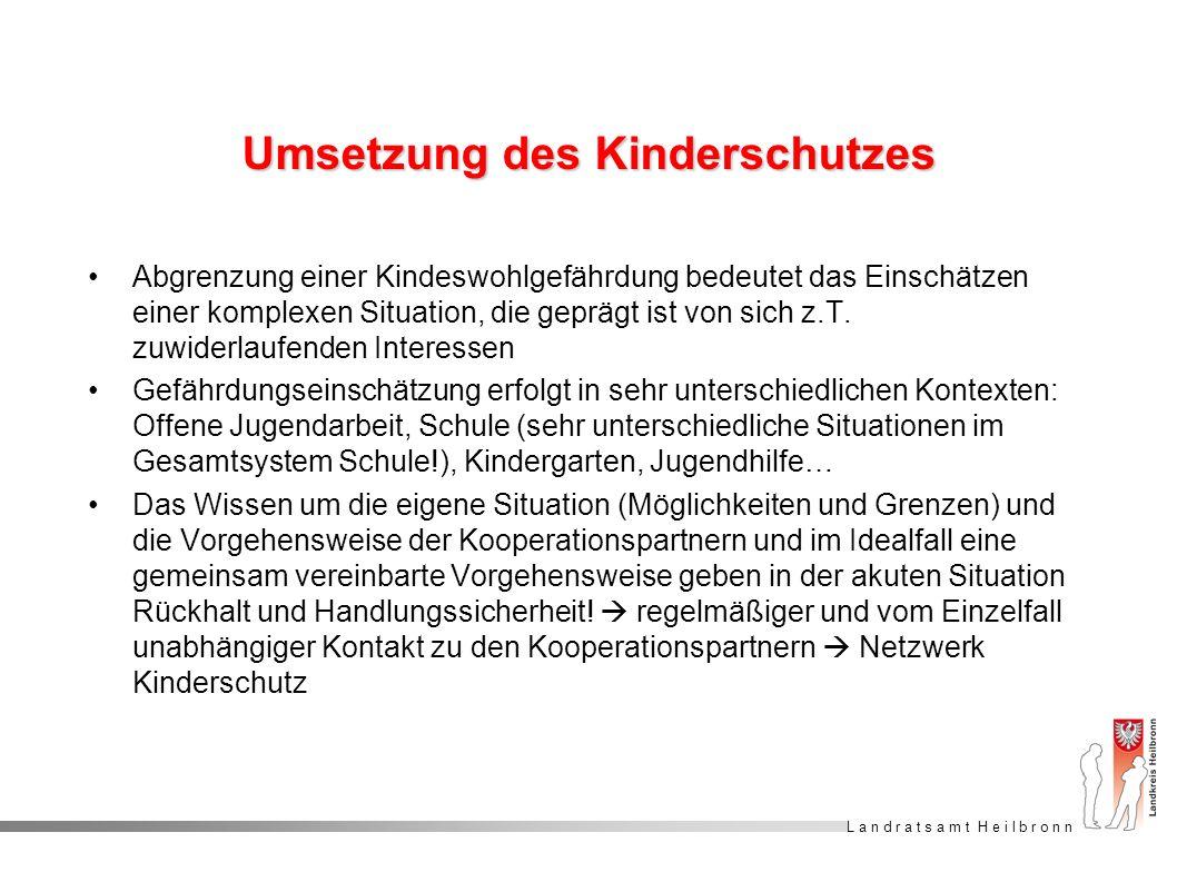 L a n d r a t s a m t H e i l b r o n n Umsetzung des Kinderschutzes Abgrenzung einer Kindeswohlgefährdung bedeutet das Einschätzen einer komplexen Si