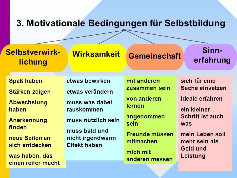 3. Motivationale Bedingungen für Selbstbildung Selbstverwirk- lichung Wirksamkeit Gemeinschaft Sinn- erfahrung Spaß haben Stärken zeigen Abwechslung h