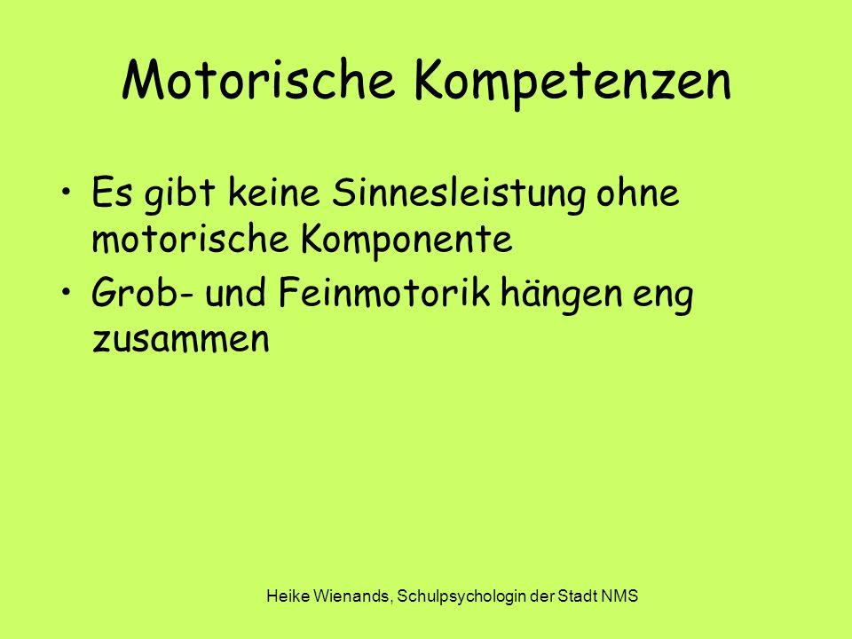Heike Wienands, Schulpsychologin der Stadt NMS Motorische Kompetenzen Es gibt keine Sinnesleistung ohne motorische Komponente Grob- und Feinmotorik hängen eng zusammen
