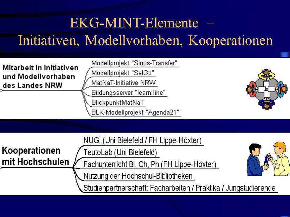 EKG-MINT-Elemente – Initiativen, Modellvorhaben, Kooperationen