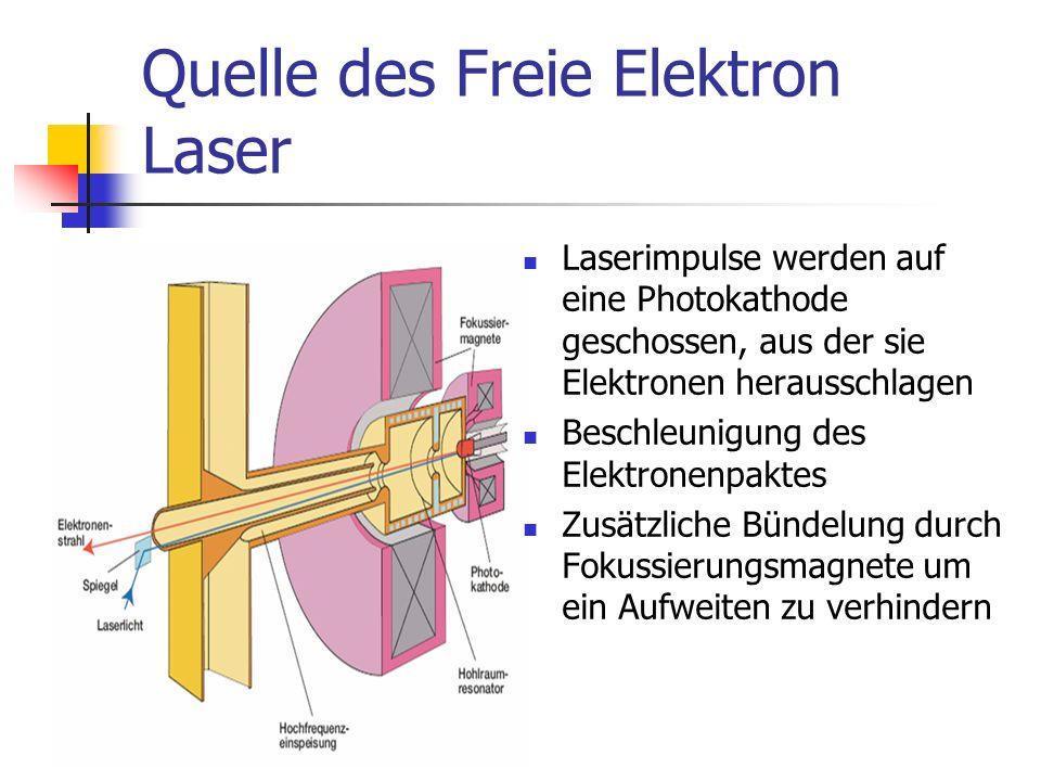 Quelle des Freie Elektron Laser Laserimpulse werden auf eine Photokathode geschossen, aus der sie Elektronen herausschlagen Beschleunigung des Elektronenpaktes Zusätzliche Bündelung durch Fokussierungsmagnete um ein Aufweiten zu verhindern