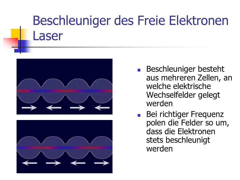 Undulatoren Röntgenlicht wechselwirkt seinerseits mit Elektronenpaket Scheibchenbildung, Komprimierung zu einem Kleinstpaket Innerhalb des Kleinstpaketes perfekte Überlagerung des Röntgenlichtes (kohärentes Licht) Verstärkung der Strahlungsintensität Undulator besteht aus Magneten mit alternierender Polung Elektronen werden auf Slalombahn gezwungen, wobei sie Röntgenlicht emittieren