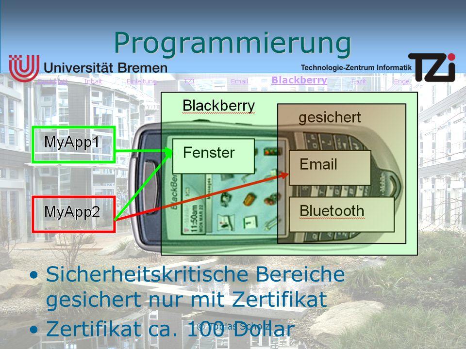 © Tobias Scholz Programmierung Sicherheitskritische Bereiche gesichert nur mit Zertifikat Zertifikat ca. 100 Dollar DeckblattDeckblatt Inhalt Einleitu