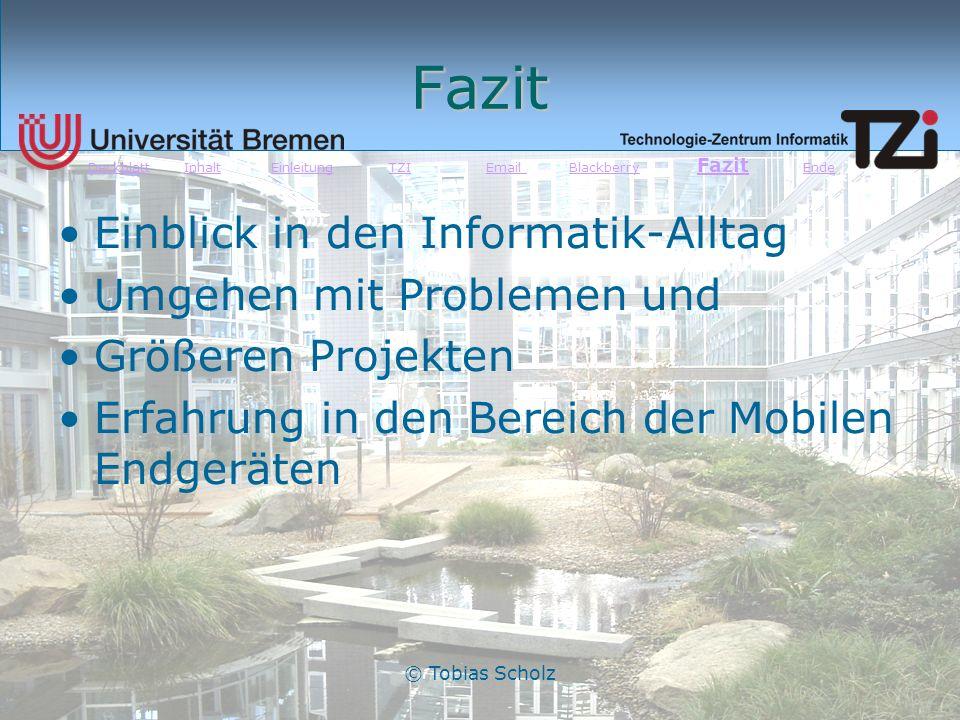 © Tobias Scholz Fazit Einblick in den Informatik-Alltag Umgehen mit Problemen und Größeren Projekten Erfahrung in den Bereich der Mobilen Endgeräten D