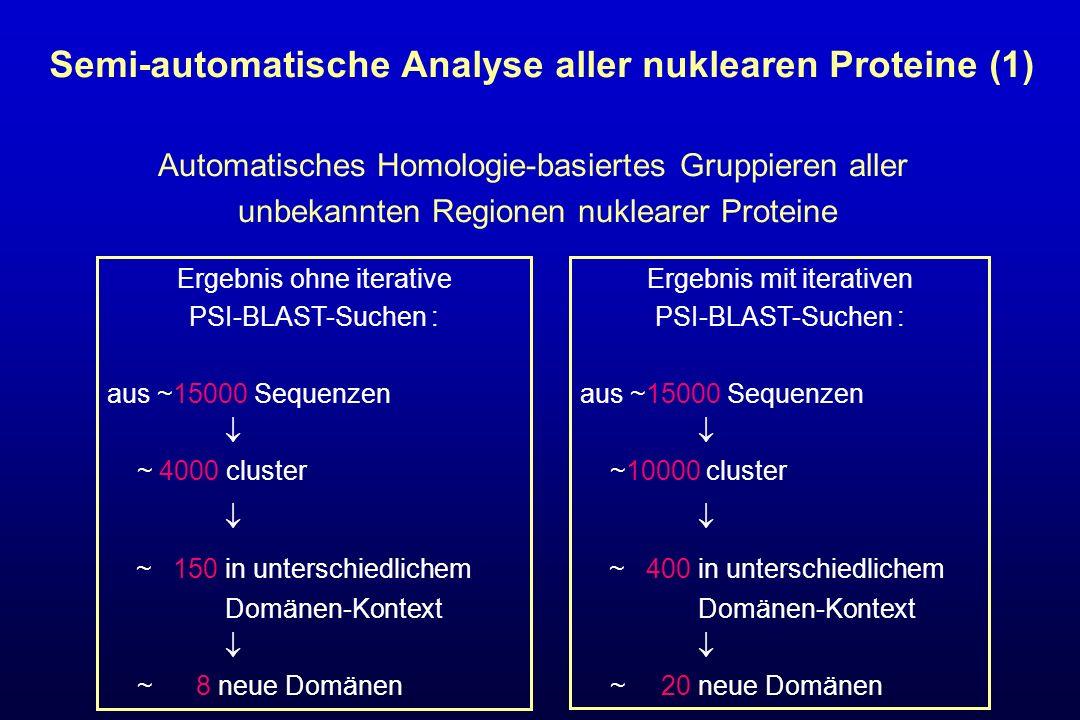 Automatisches Homologie-basiertes Gruppieren aller unbekannten Regionen nuklearer Proteine Ergebnis ohne iterative PSI-BLAST-Suchen : aus ~15000 Seque