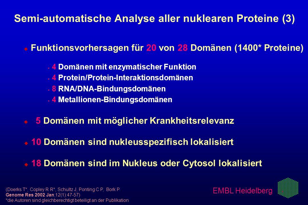 EMBL Heidelberg Semi-automatische Analyse aller nuklearen Proteine (3) u u Funktionsvorhersagen für 20 von 28 Domänen (1400* Proteine) w w 4 Domänen m