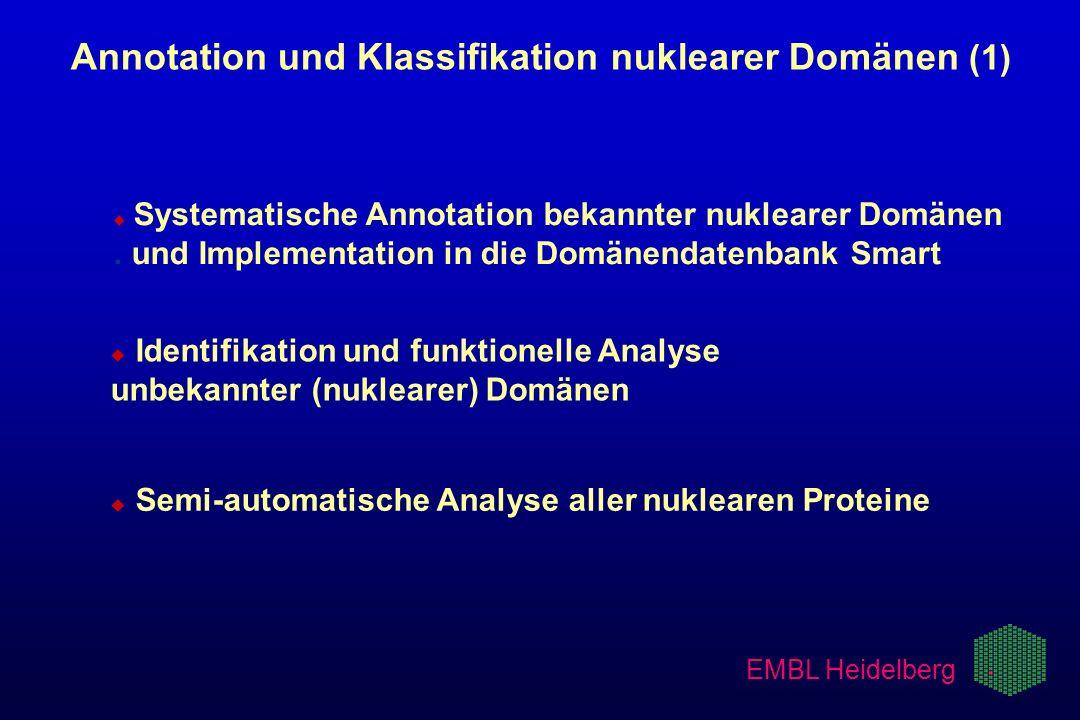 EMBL Heidelberg u u Systematische Annotation bekannter nuklearer Domänen. und Implementation in die Domänendatenbank Smart u u Identifikation und funk